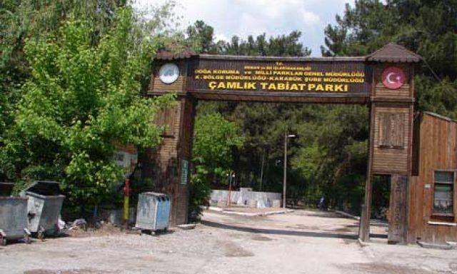 Çamlık Kamp Alanı